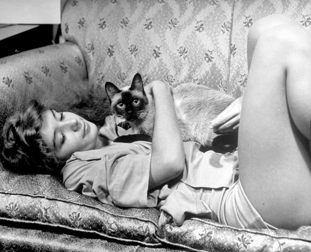 Aspiring ballerina Edwina Seaver relaxing on sofa at home with Siamese cat Ting Ling, 1940.