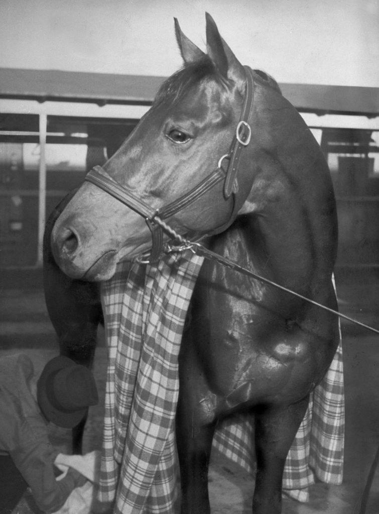 Championship horse Seabiscuit after winning Santa Anita Handicap, 1940.