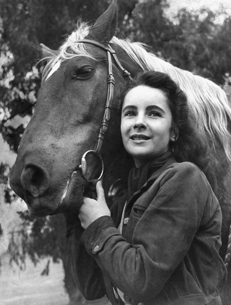 """Elizabeth Taylor posed with a saddle horse after her smash movie debut in """"National Velvet,"""" 1945."""