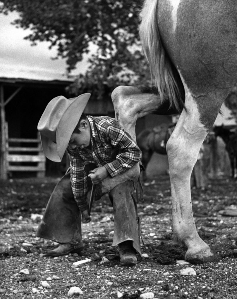 6 year old cowboy learning how to shoe a horse, 1954.