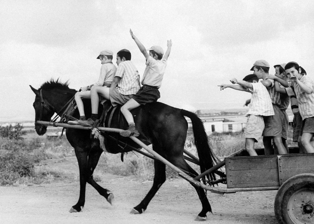 Israeli children of Habad sect, frolic with horse and cart at farm village, 1960.
